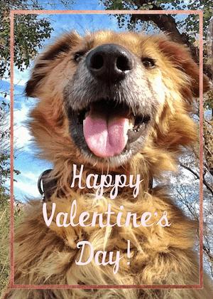 Selfie Valentine