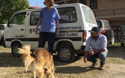 My Mobile Clinic Day