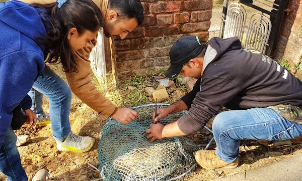 rabies camp net catching