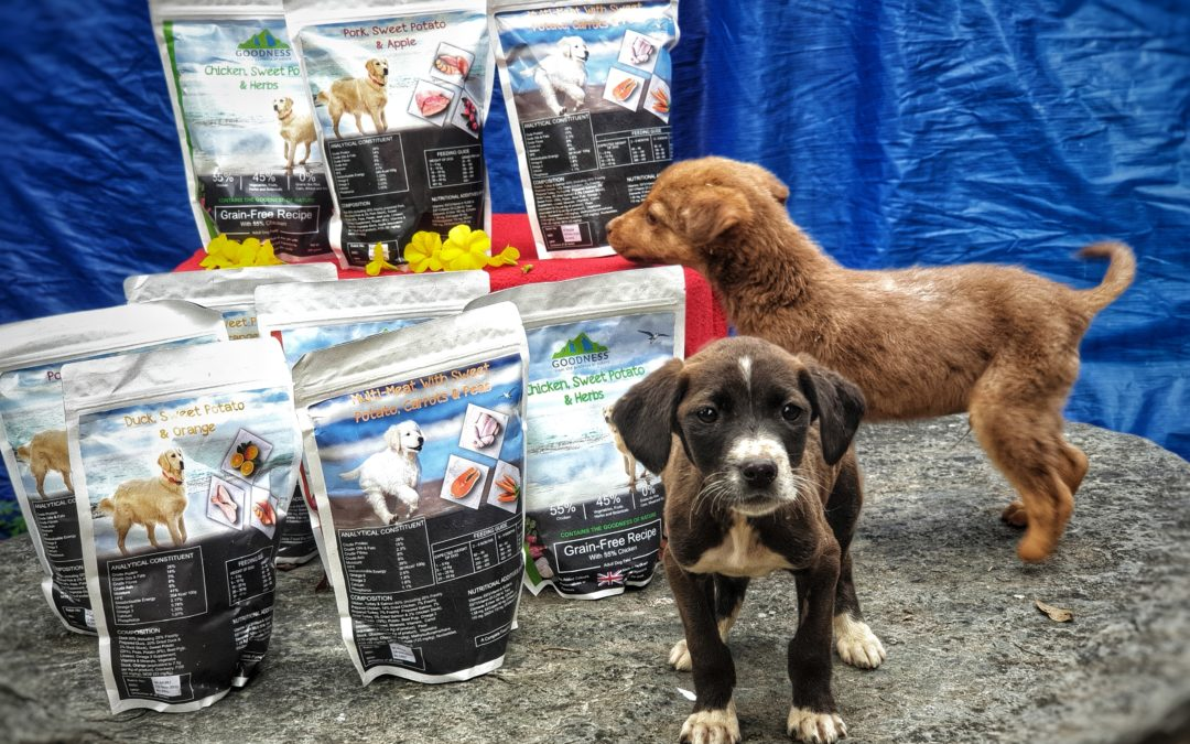 Grain-Free Food For Dogs In India
