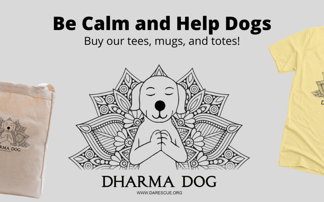 International Animal Rescue Launches Product Line to Save Dogs