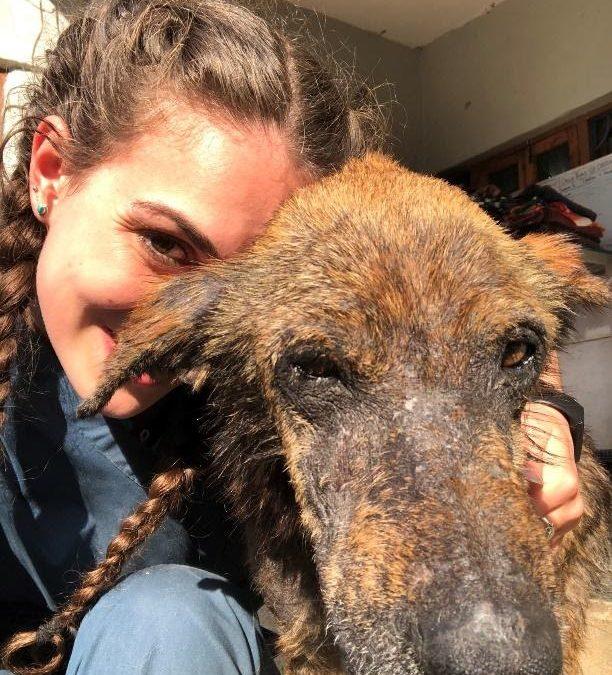 Crusty's Story: How DAR Saved My Skin