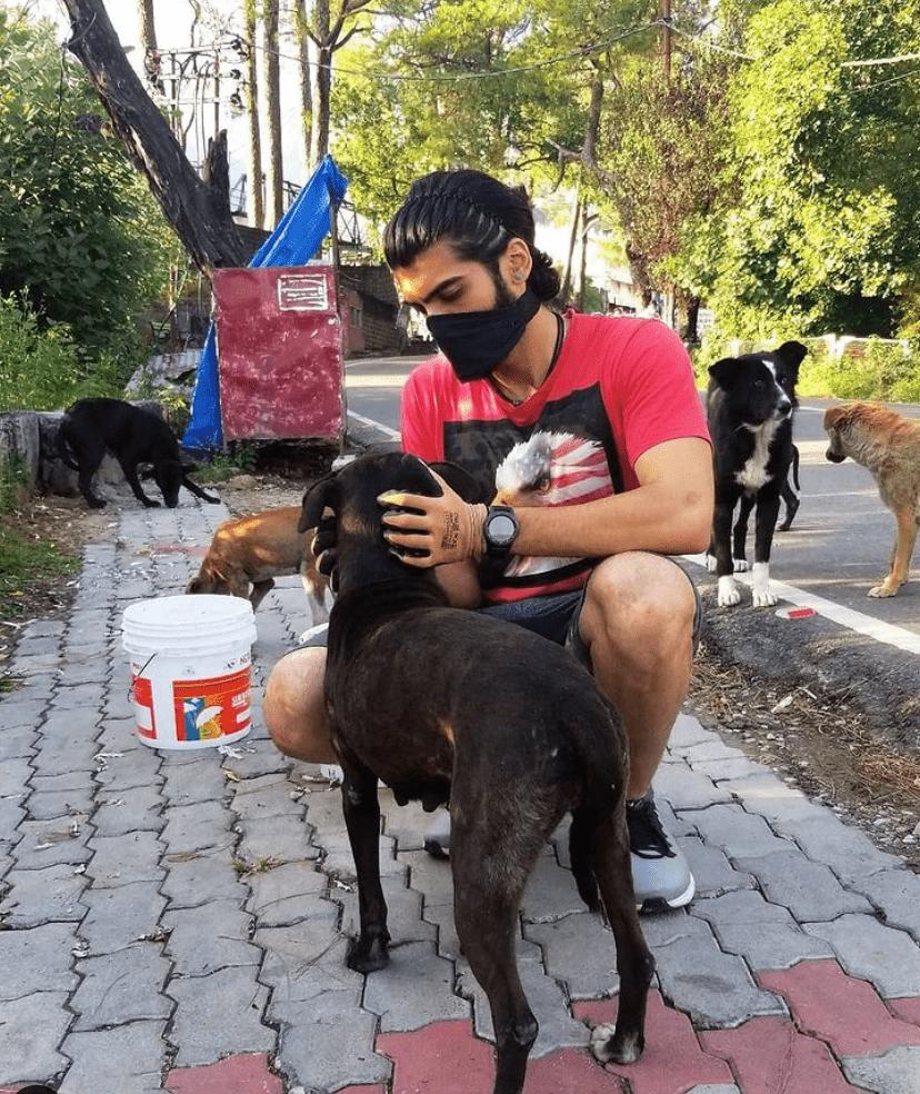 Dharamsala Animal Resue